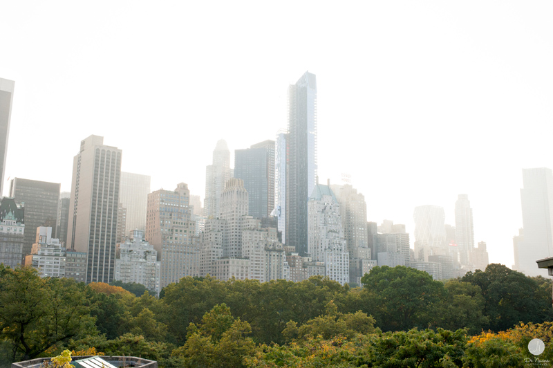 14 Views of Central Park