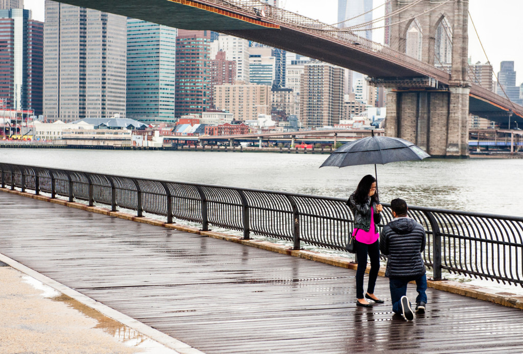 Best Spots to Propose in NYC