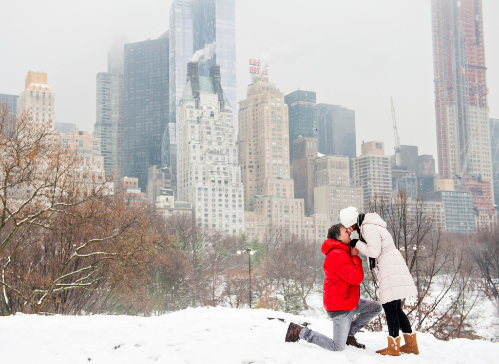 Snowy Central Park Proposal