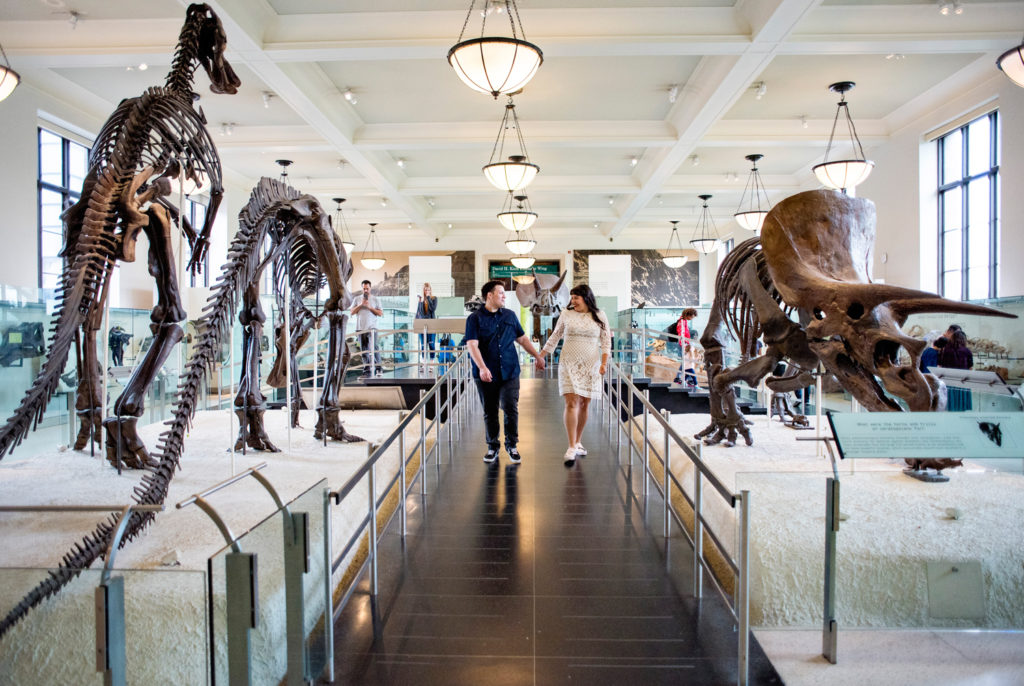 Museum of Natural History Engagement Photos